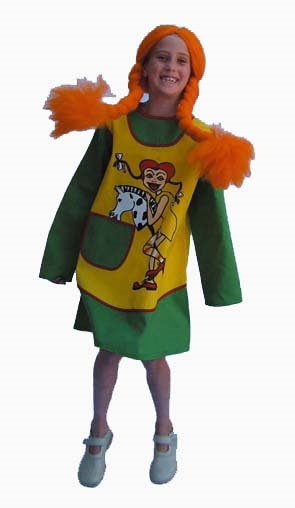Kostuum Pipi Langkous Budget Kind
