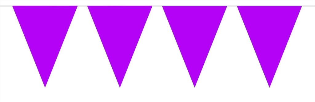 3m Mini Vlaggenlijn Uni Paars