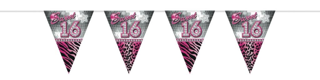Vlaggenlijn Sweet 16 10meter