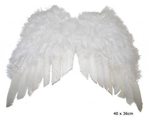 Vleugels Wit 40x36cm