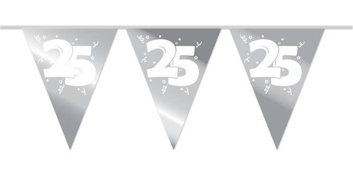 10m Vlaggenlijn 25 Zilver Wit Opdruk
