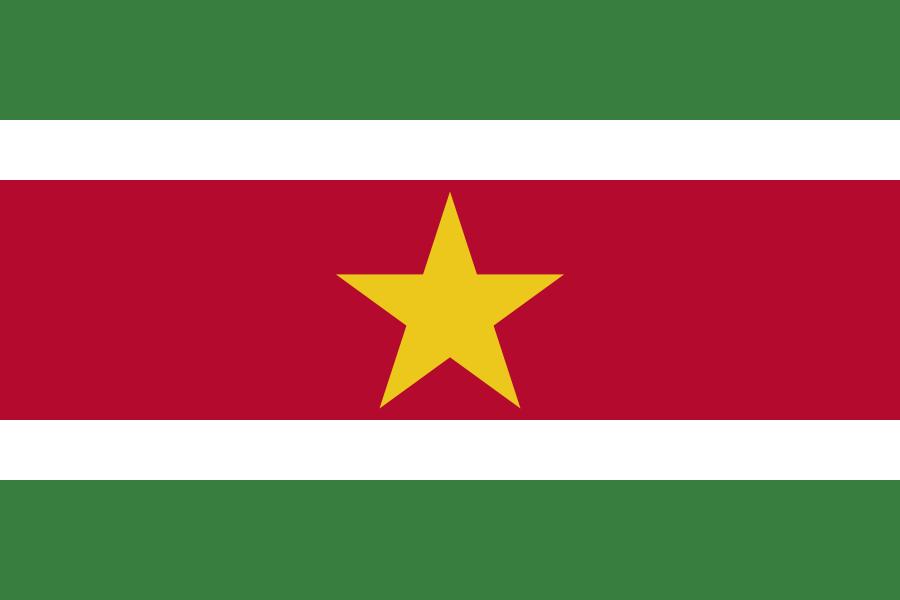 Vlag Suriname 90x150cm