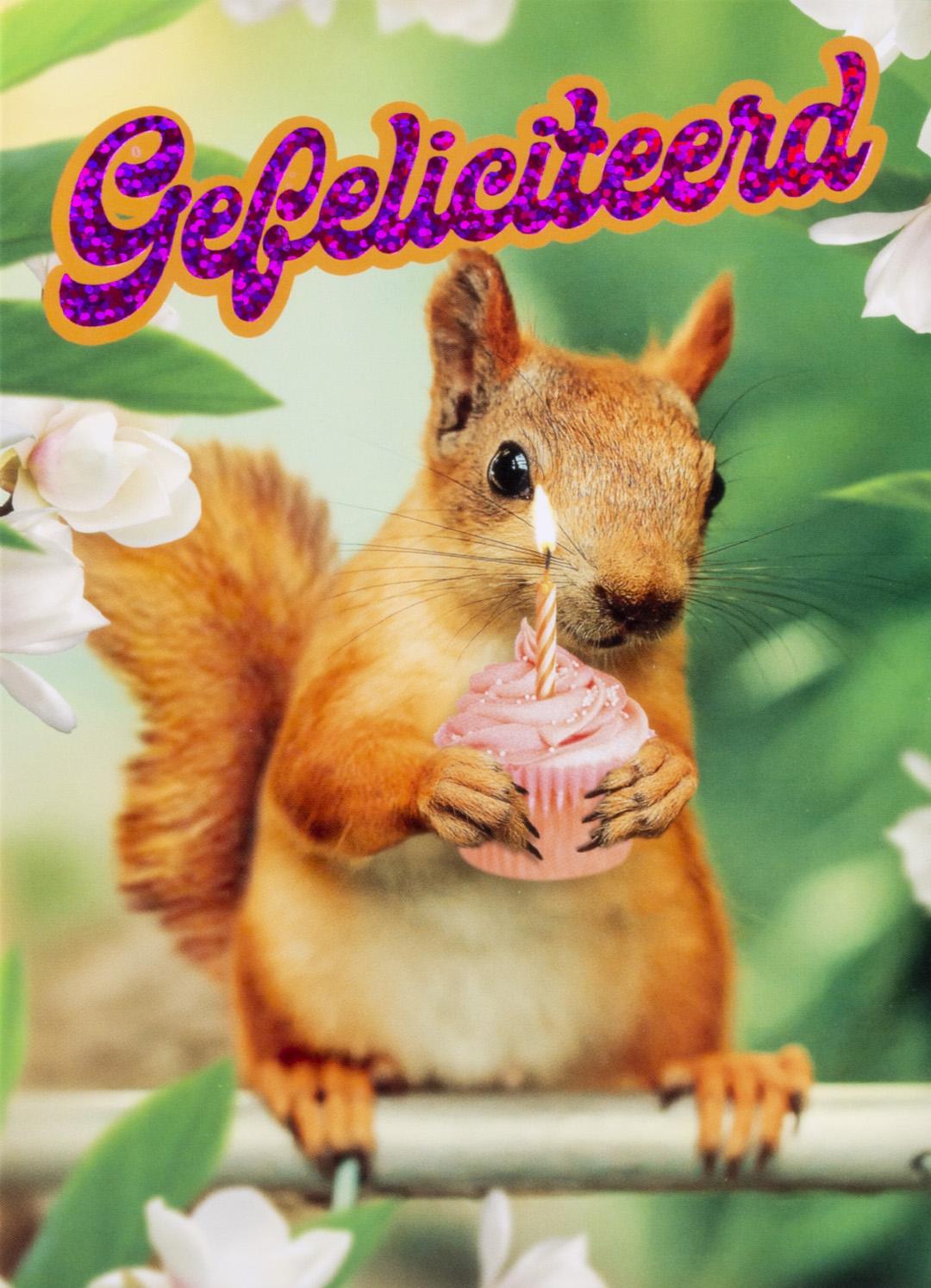 OMG Wenskaart Eekhoorn Gefeliciteerd