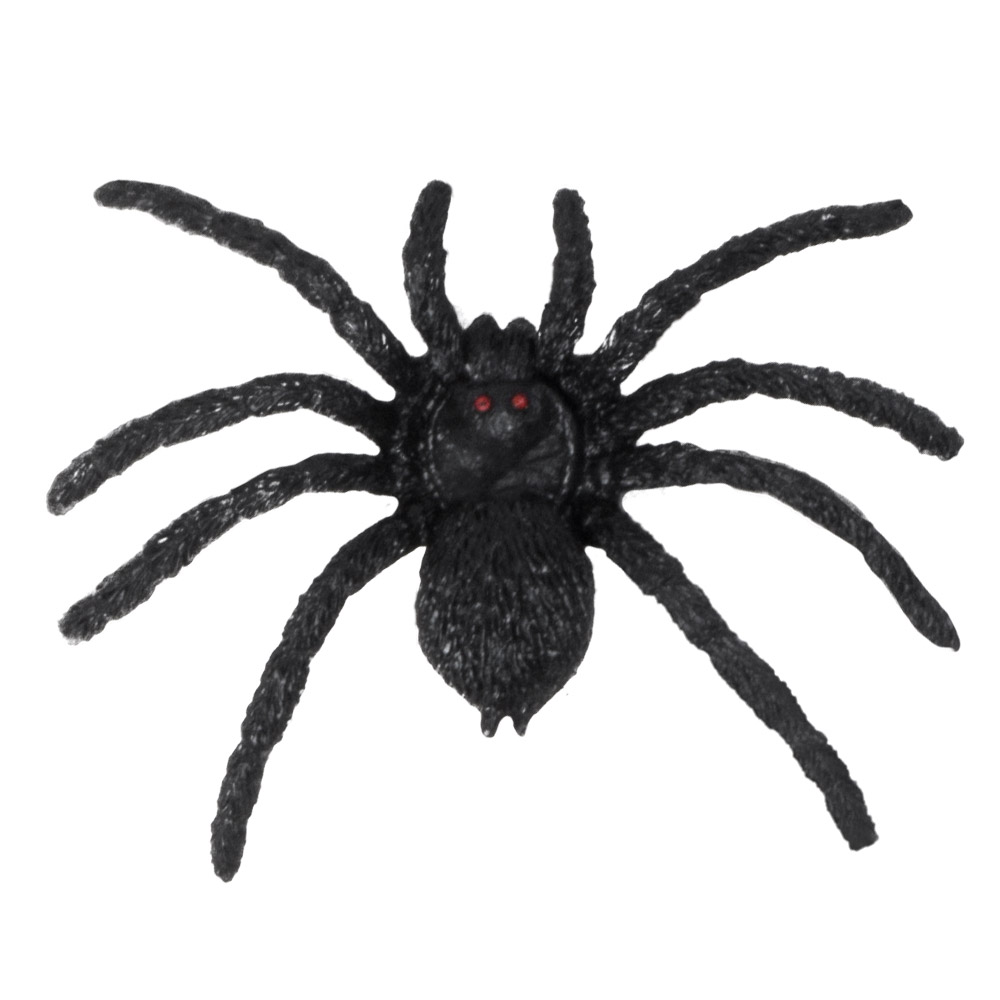 12st Spinnen Zwart