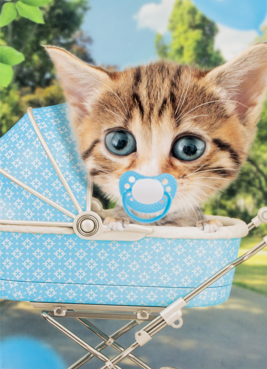 OMG Wenskaart Kat Baby Jongen