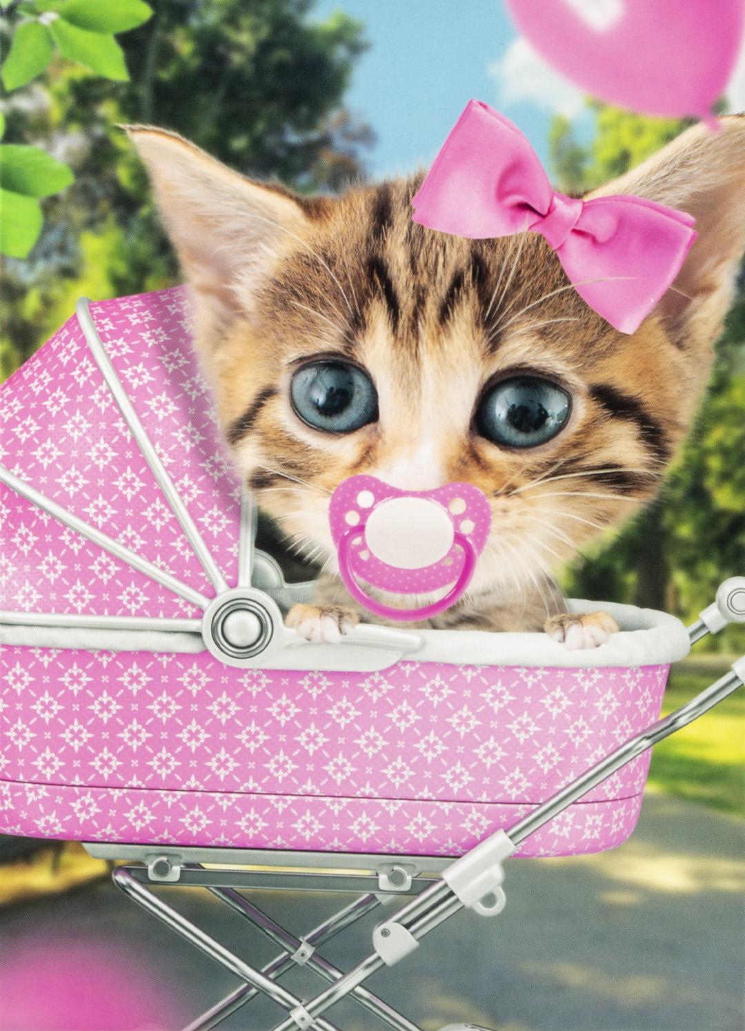 OMG Wenskaart Kat Baby Meisje