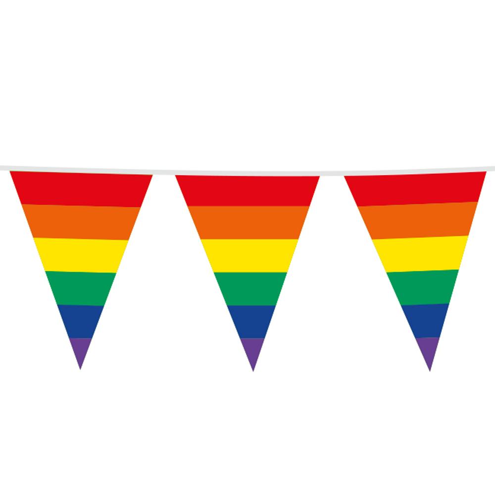 10m Maxi Vlaggenlijn Regenboog