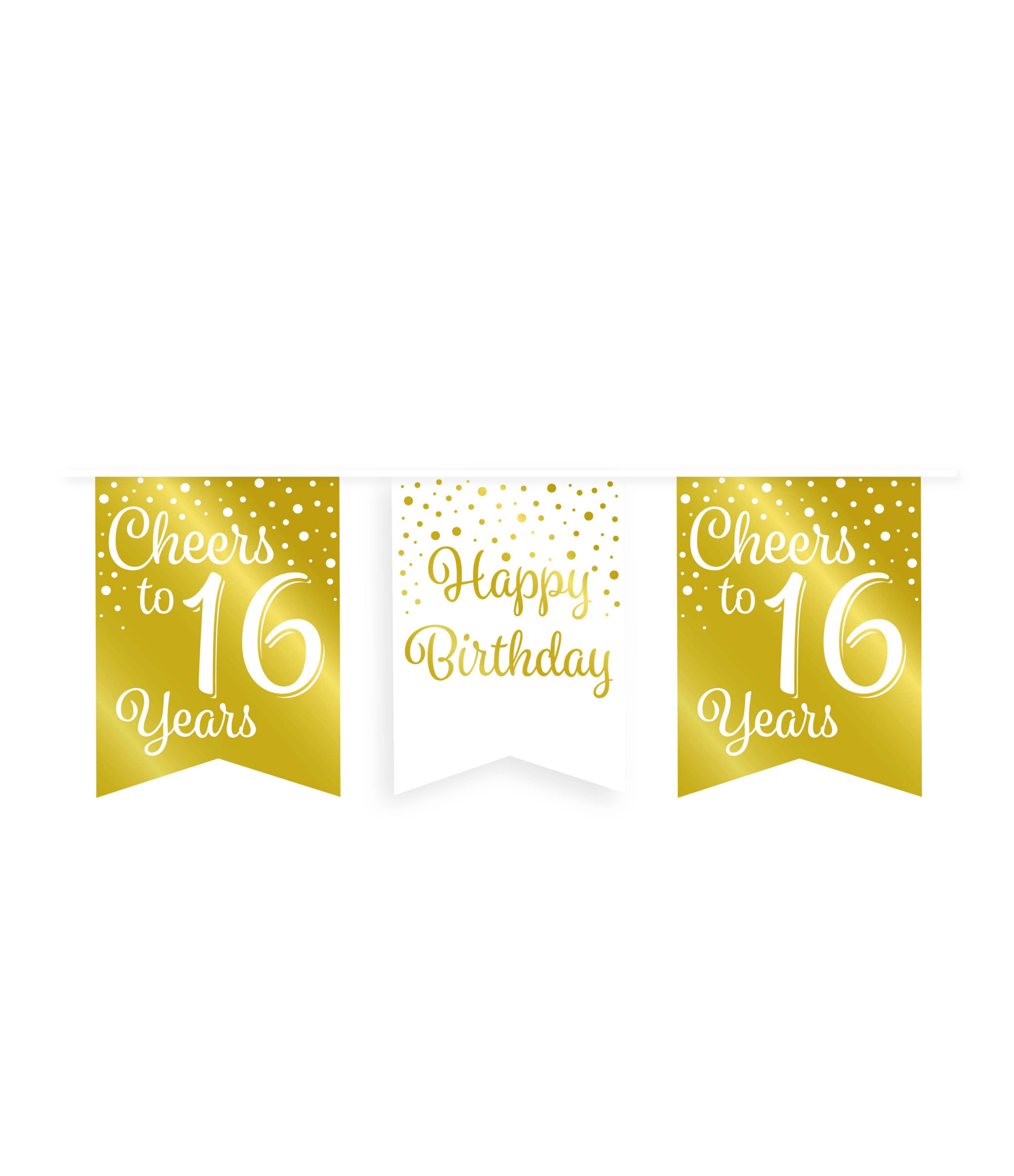6m Vlaggenlijn Goud/Wit Cheers to 16 Years