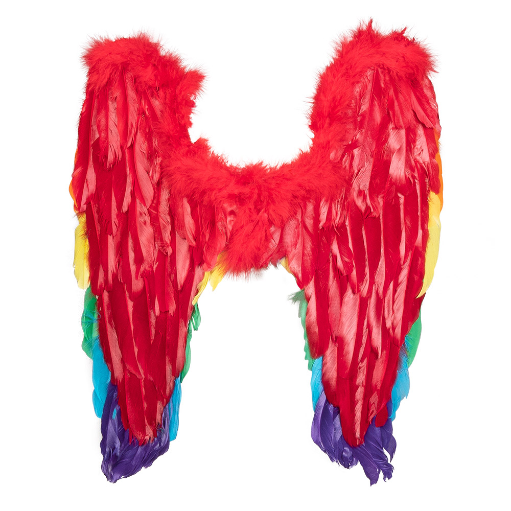 Engelenvleugels Regenboog 50x50cm